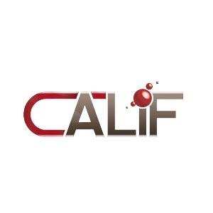Coordination des organismes actifs dans la formation préqualifiante et l'insertion socioprofessionnelle (CALIF ASBL)
