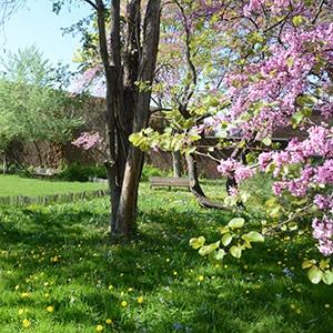 Jardin Morinval