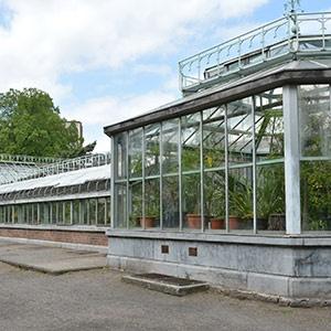 Galerie - Les serres du Jardin Botanique