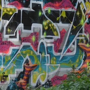 Paliss'art : wall of fame du Kleyer