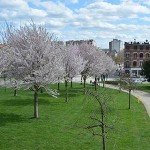 Esplanade Saint-Léonard