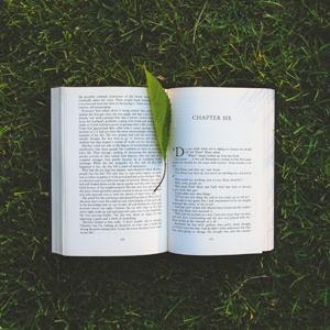 Lire dans les parcs
