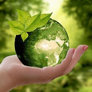 À Liège, 4 actions prioritaires pour la planète