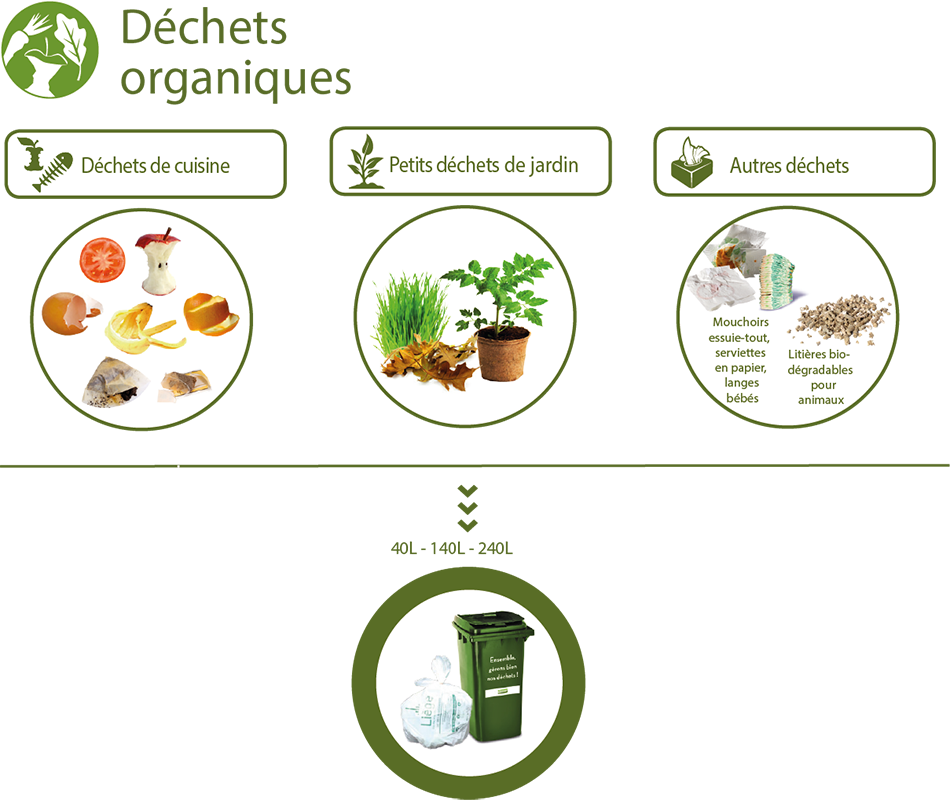 Tri-dechets-organiques.png