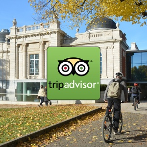 TripAdvisor: help us reach the top!